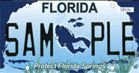 Florida Springs License Plate