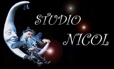 Studio Nicol
