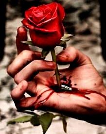 Había una rosa...