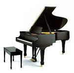 I love piano!