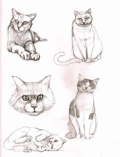 the mistresses sketchbook cat sketches