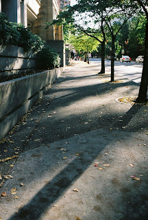 Multnomah County Courthouse in the Fall 2006