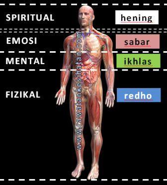 Personaliti dan tubuh