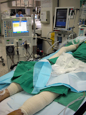 Guidelines for Dialysis Care
