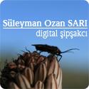 Süleyman Ozan SARI