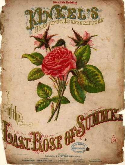 the last rose of summer poem