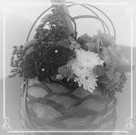 Emily's Floral Decoration @ Tommy's Interior Design (I)