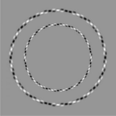 Tricky Circle Illusion
