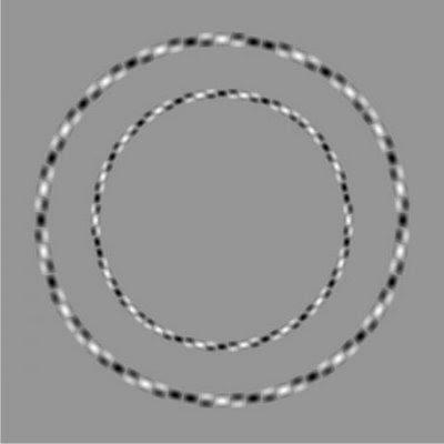 Tricky Circle Illusion