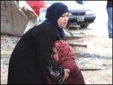 تصفح موقع نبض العراق