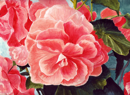 Just A Ray Of Beauty These Scarlet Begonias Were Irresistible To Paint They Are One My Favorite Flowers