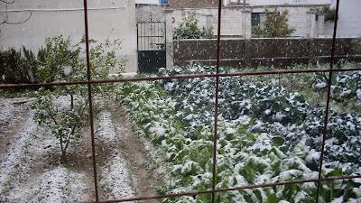 Nieve en Brenes. Foto 1