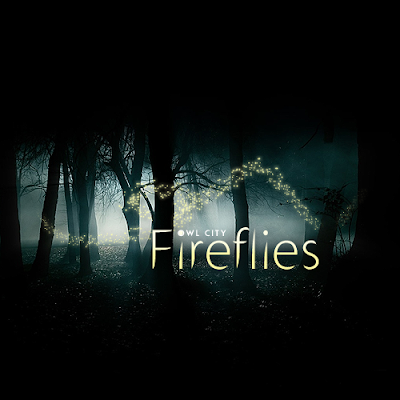 Fireflies Owl City Video. if 10 million fireflies,