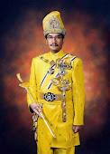 Yang di-Pertuan Agong Sultan Mizan Zainal Abidin