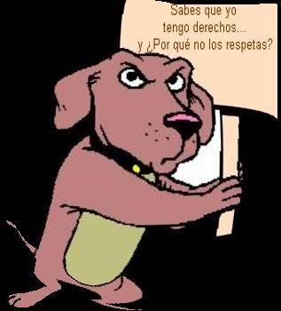 Derechos de los animales Perro2