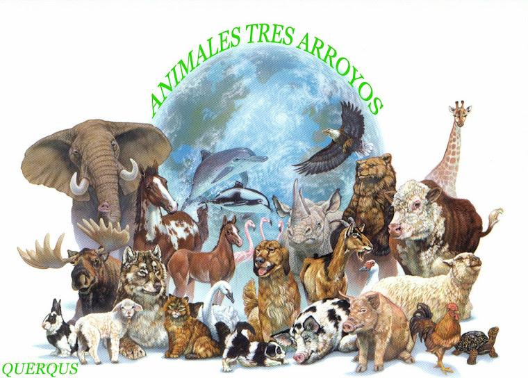 AnimalesTresArroyos