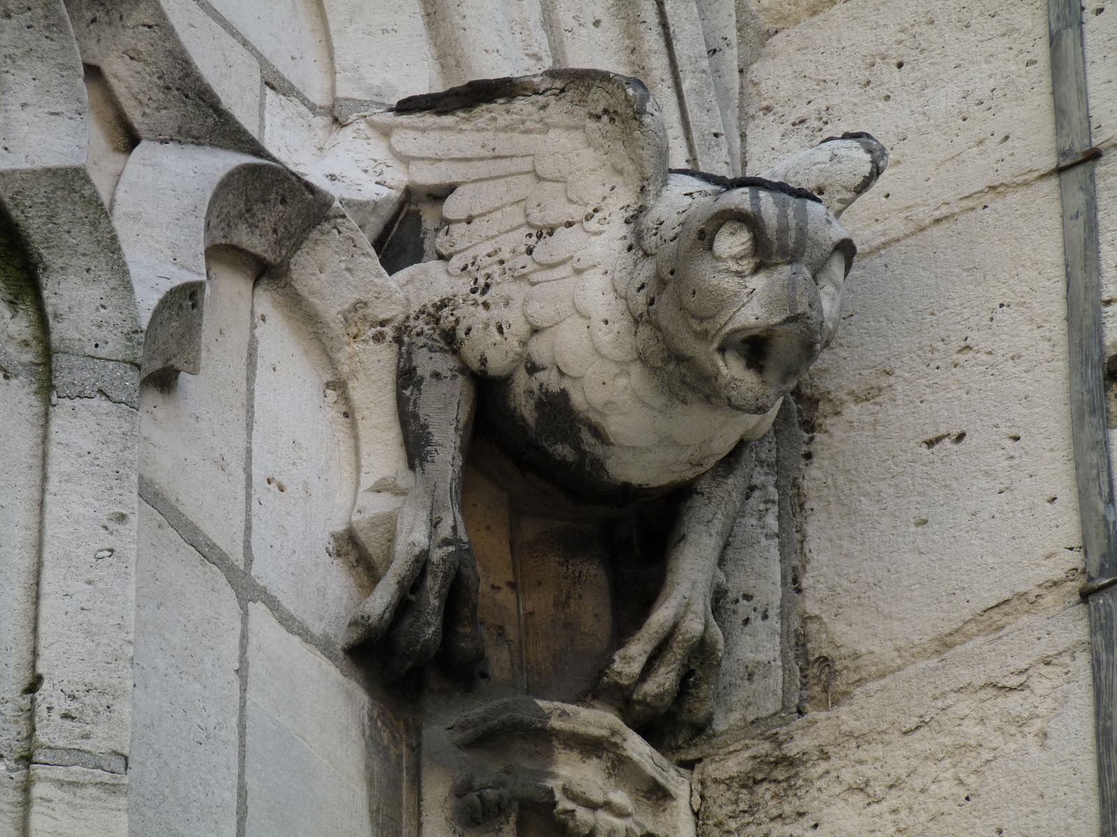 the history of the gargoyle architectural Gargoyles are a famous feature of medieval gothic architecture see if you know the history of gargoyles using this multiple-choice quiz and.