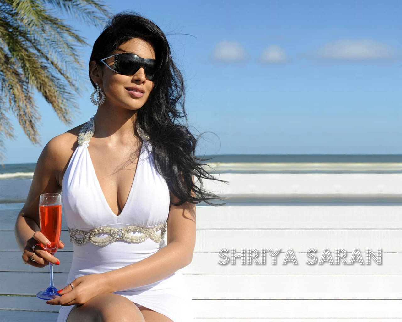 Shriya Hot Wallpapers (5)
