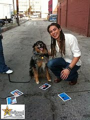 "Hollywood Paws' ""One-Shot-Wonder"" On-Set With American Idol's Jason Castro"