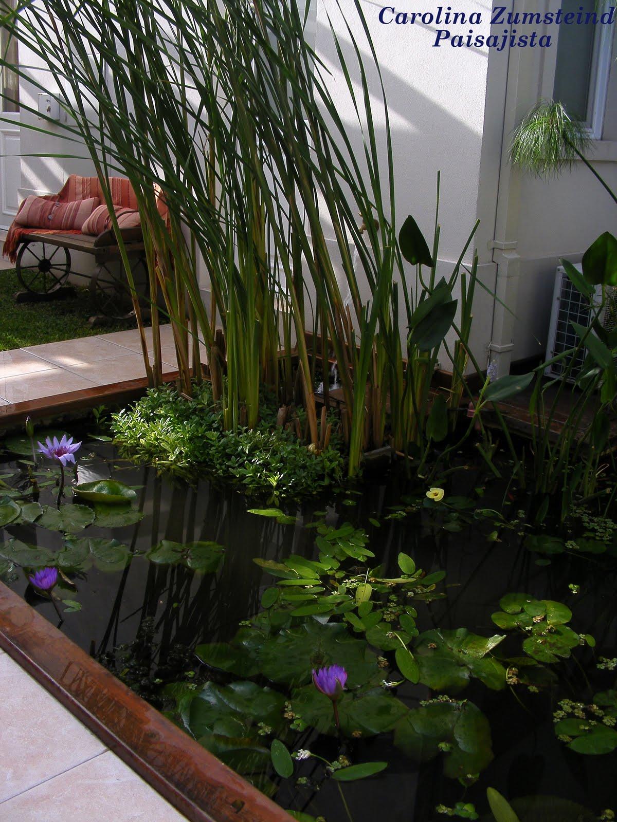 Indigo estanques para todos los gustos y necesidades for Fotos estanques