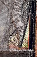 cage stolen monkeys