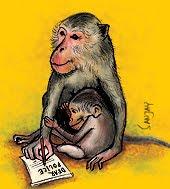 monkey police record