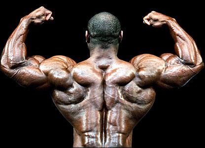 42664419 Bodybuilder