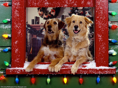 Christmas Dogs HD Desktop Wallpapers