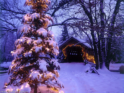 Free Christmas Nature Wallpaper Christmas Nature View