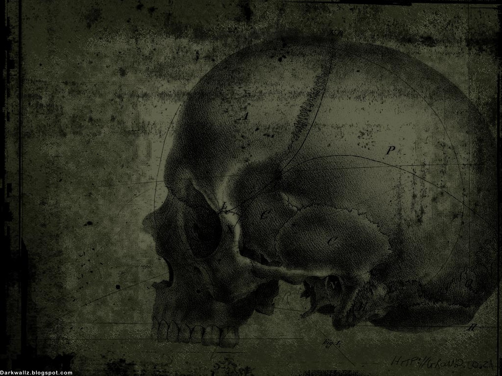 Dark Skulls Wallpapers 96 | Dark Wallpaper Download