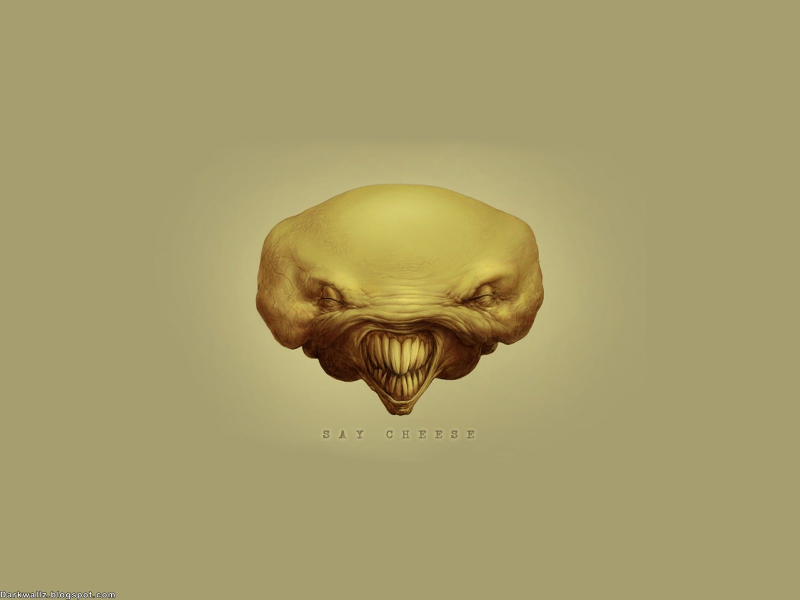 Dark Skulls Wallpapers 105 | Dark Wallpaper Download