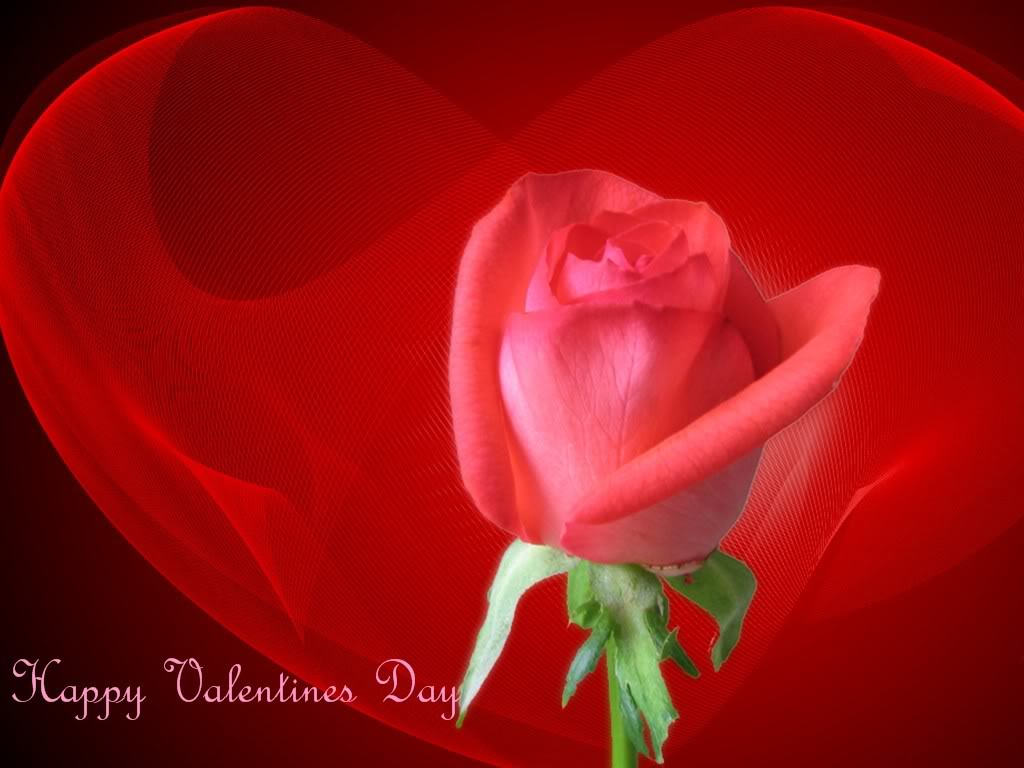 http://4.bp.blogspot.com/_-mY2ck9YCeE/TQwRtYh2DNI/AAAAAAAACNM/gSrJgf-Yrxg/s1600/1264470178_1024x768_happy-valentines-day-wallpaper-free-download.jpg