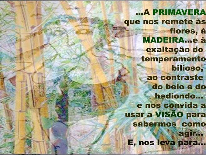 Pachamama Madeira Final-35