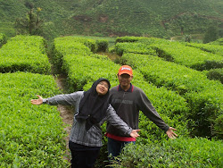 Cameron Highlands, 2006