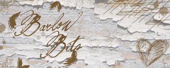 Barlow Bits