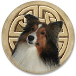 Another great Sheltie Shop!