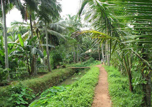 Kerala Villages Most Beautiful Place In India