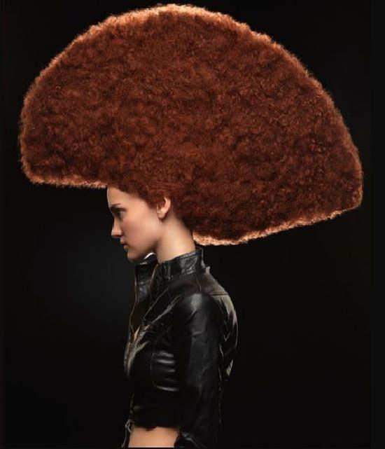 Beautiful Hair Fashion Looks Funny