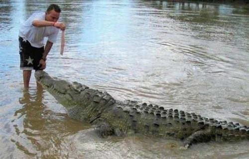 Amazing funny crazy pictures