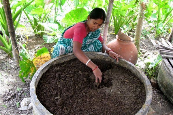Harvesting Vermicompost