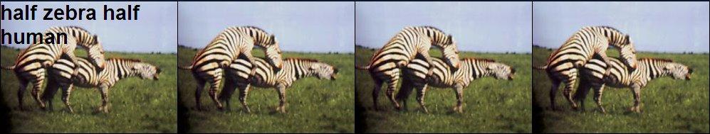 half zebra half human