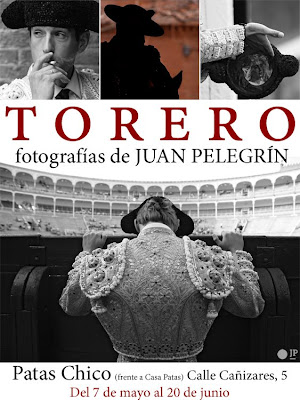 Cartel de la exposición de Juan Pelegrín