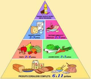 Cours d'hygiène alimentaire pdf