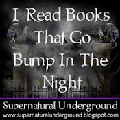I Support The Supernatural Underground