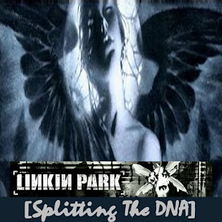 Linkin Park - Splitting The DNA (disc 1)