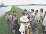 Marshy Guided Tours