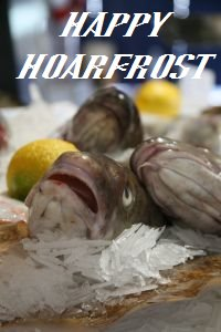 HAPPY HOARFROST
