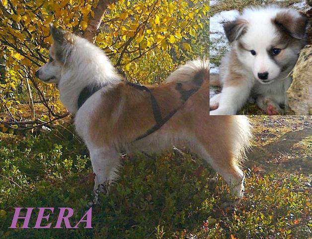 Hera, 15.11.2007