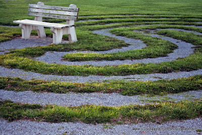 Wooden Bench surrounded by a spiraling path.