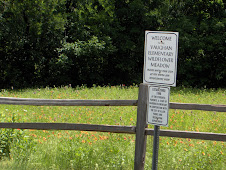 Vaughan Wildflower Meadow Sign